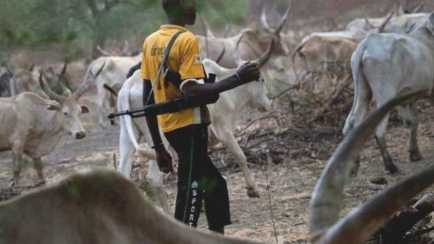 Fulani Cattle Rustlers Kill 11 Soldiers In Kaduna