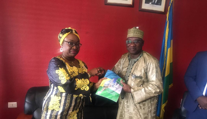 Nigerians Must Be Patriotic, Subject To Laws – Envoy