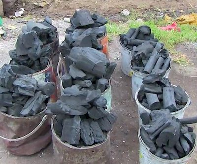 Forest Exploitation: Niger State Auctions Seized Charcoal To Public